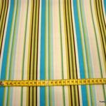 Amy Butler - Daisy Chain - Happy Stripe